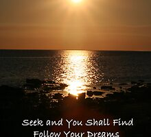Seek & You Shall Find by Diamond8