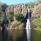 Wangi Falls ,Litchfield National Park Northern Territory Australia  by Virginia McGowan