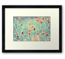 Sense Of Calm Framed Print