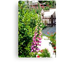 Foxglove flowers Canvas Print