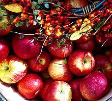Apple Harvest by Graciela Maria Solano