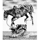 High Roller by J.D. Bowman