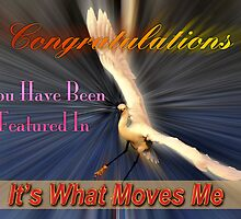 Its What Moves Me Banner Feature Banner by imagetj