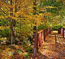 Bridge in Autumn by Mark Podger