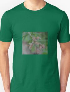 AUSTRALIAN NATIVE PLANT Unisex T-Shirt