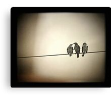 Three Little Birds Canvas Print