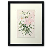 A Monograph of the Genus Lilium Henry John Elwes Illustrations W H Fitch 1880 0107 Framed Print