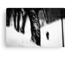 OnePhotoPerDay Series: 348 by L. Canvas Print