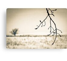 OnePhotoPerDay Series: 349 by L. Canvas Print