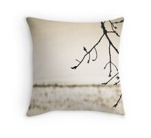 OnePhotoPerDay Series: 349 by L. Throw Pillow