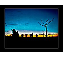 Grungy Cow Photographic Print