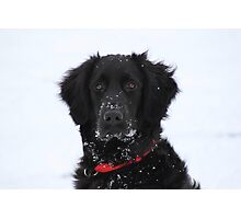 Sota In The Snow Photographic Print