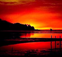RED SKY  by RoseMarie747