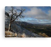 Scene from Mesa Verde National Park, Colorado Canvas Print