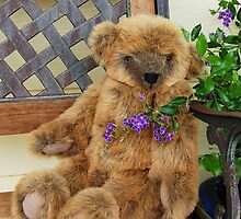 Big Teddy Loves The Outdoors by Eve Parry
