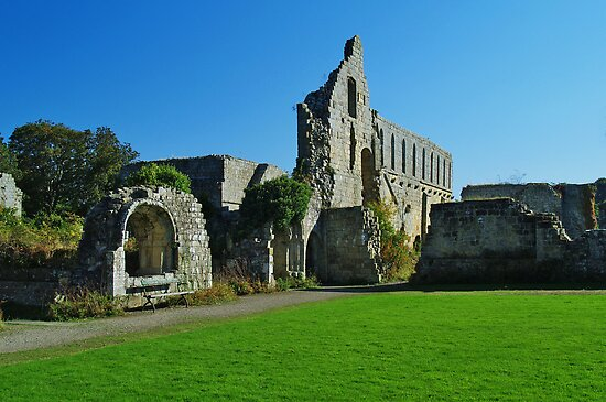 Jervaulx Abbey by WatscapePhoto