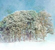 Snow Flakes Fall. by Aj Finan