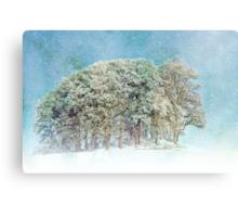Snow Flakes Fall. Canvas Print