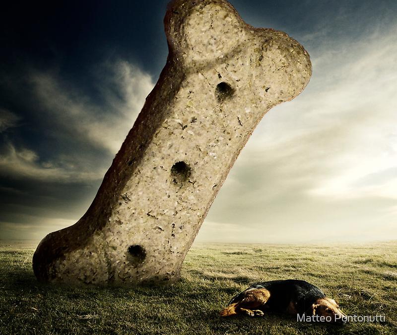I Give Up... by Matteo Pontonutti
