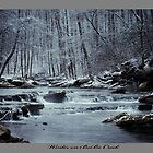 Winter on BoBo Creek by Ray Wells