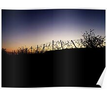 Barbed Wire Silhouette Poster