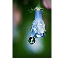 So Blue Photographic Print