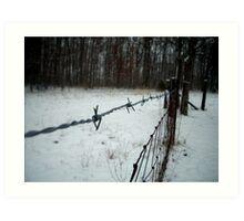 Cold Wire Art Print