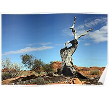 Kings Canyon Outback Australia Poster