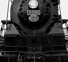 New York Central 3001 4-8-2  # 5....Heed the warning...We only stand and stare at power they possess...Metalhead by jammingene