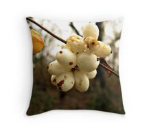 Winter's Fruit Throw Pillow
