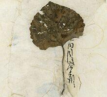 Leaf On Kinwashi by Elena Ray