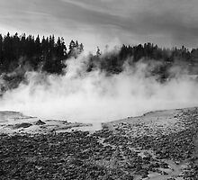 Yellowstone National Park - Mud Pots by Frank Romeo