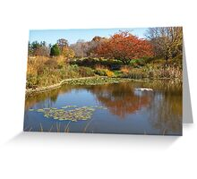 On Holden Pond Greeting Card