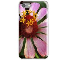 Queen of the Flower Fairy's 2 iPhone Case/Skin