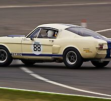 Ford Shelby Mustang GT350 by Willie Jackson