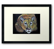 Night Staulker -- cougar Framed Print