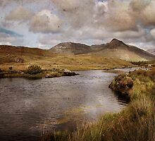 A wild song ... by Dominic Moriarty