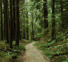 West Canyon Trail Simplified by Michael Garson