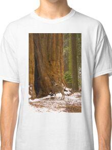 Mule Deer Classic T-Shirt