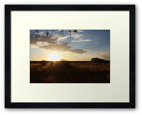 Sunset in the Kalahari by MarkySA