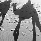 Shades of the Sahara, in black & white by Iris MacKenzie