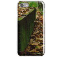 Fallen Leaves of Autumn - 2 iPhone Case/Skin