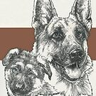 German Shepherd Father & Son by BarbBarcikKeith