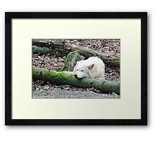 Wherever I Lay My Head Framed Print
