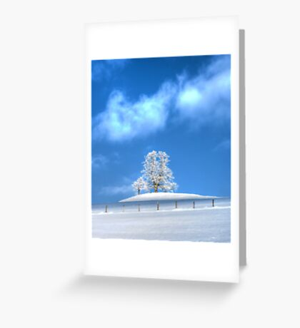 Against the Winter IV Greeting Card