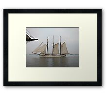 Empire Sandy Framed Print