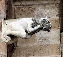 Gargoyle Water Spout by phil decocco