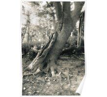 Tree On Grass Island Poster