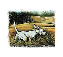 Hunting Dogs Photographic Print