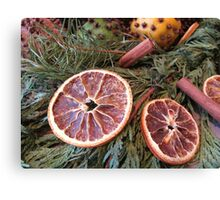 Be Fruitful Multiplied Canvas Print